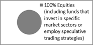 100% Equities allocation